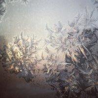 Зима :: Румия Сибатова