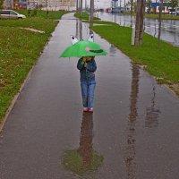 ушастик под дождем... :: Vladimir Semenchukov