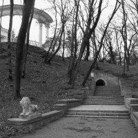 В курортном парке в Ессентуках есть и такие львы. Как же без львов?:) :: Александра