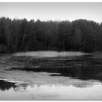 Первый лёд :: Михаил Цегалко