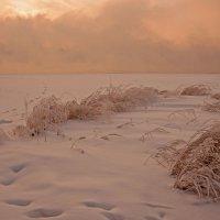 Под вечер в зимнюю погоду... :: Сергей Герасимов