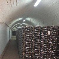 Завод шампанских вин Новый свет :: Tata Wolf