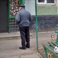 Кто стоит, а кто сидит... :: Нина Корешкова