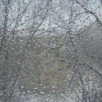 А за окном-то дождь,то снег... :: марина ковшова