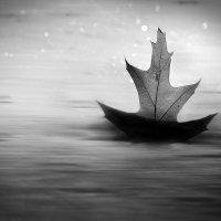Он бежит себе в волнах на поднятых парусах :: Лидия Цапко