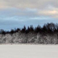 Река Малкурья, за деревьями автотрасса Северодвинск-Архангельск. :: Михаил Поскотинов