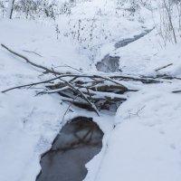 зимний ручей :: Анатолий Калмыков