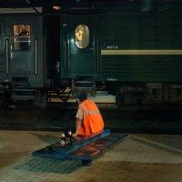 А мимо проходили поезда... :: Ольга Лиманская