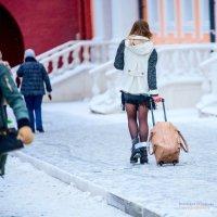 Пофигу мороз :: KotoPalych Gf