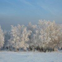Красавица-Зима :: Михаил Пахомов