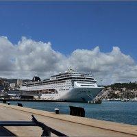 В порту Пальма де Майорка. :: Leonid Korenfeld