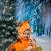 Новогодняя белочка :: Mari Shurins