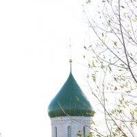 Крепостные валы Переславль-Залесский :: Чернова Анна