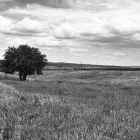 пейзаж :: Юлия Морозова