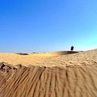 Сахара. :: Чария Зоя