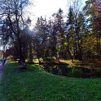 На прогулке ... :: Владимир Икомацких