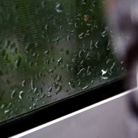 Летний дождь... :: Валерия  Полещикова