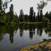 Пруд в парке имени Юрия Гагарина :: Александр Рыжов