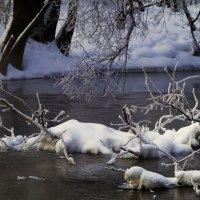 Зимний пейзаж на Иже :: Владимир Максимов