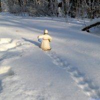 Дед Мороз уже в пути! :: Андрей Заломленков