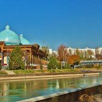 Ташкент :: Светлана