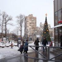 Новый год у ворот.. :: Svetlana Lyaxovich