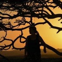 Африканский вечер... :: Sergey Gordoff
