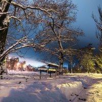 Зимний ночной. :: Инга Мысловская