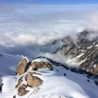 В тумане все кажется необыкновенным. :: Anna Gornostayeva