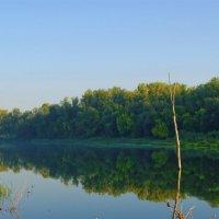 утро у реки :: герасим свистоплясов