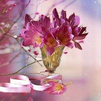 Цветы осени. :: alfina
