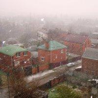 Непогода: Дождь со снегом :: татьяна