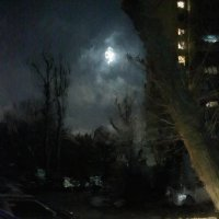 парковка при лунном свете :: Николай Семёнов