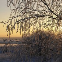 Мороз и солнце :: Татьяна Ракутина