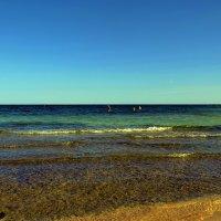 Красное море... :: Sergey Gordoff