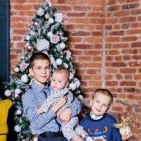 семейный новый год :: Лилия Царегородцева