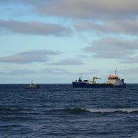 В ноябре на Балтике :: Маргарита Батырева