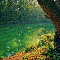зеленое озеро :: герасим свистоплясов
