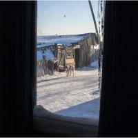 вид из окна :: Елена Исхакова