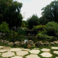 Прудик в Ботаническом саду :: Александр Рыжов