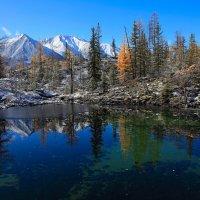 Осень отступает ... :: Владимир Собардахов