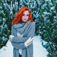 Зима.Ёлки. :: Андрей Липов