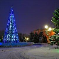 Скоро новый год. :: владимир