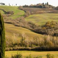 рай земной- Тоскана :: Елена Заичко