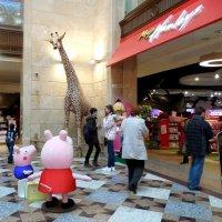 Жираф большой, ему видней.... :: Мила