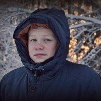 Холодно... нахохлились. :: Елена Третьякова