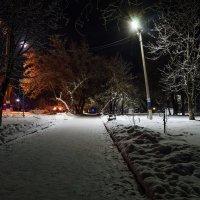 Вечер в парке :: Alexandr