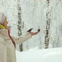 Непуганые птицы. :: Ольга