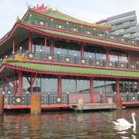 Амстердам. Китайский ресторан на воде. Лебедя пока не съели! :: ponsv