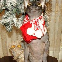 Так Дед Мороз сществует?! :: nika555nika Ирина